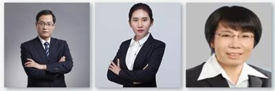 承办律师:赵健、鲁金艳、董琛