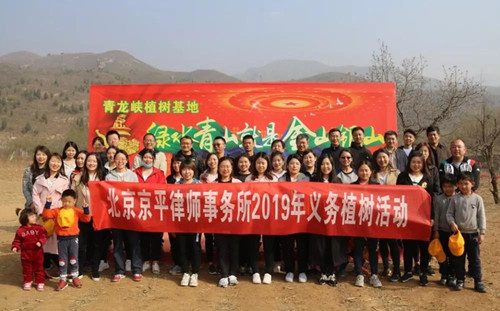 植树催浓春意,播绿造福后人——2019京平律师义务植树活动